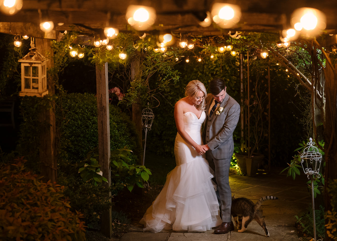 Bride and groom under the festoon lights being welcomed by the cat at Russets