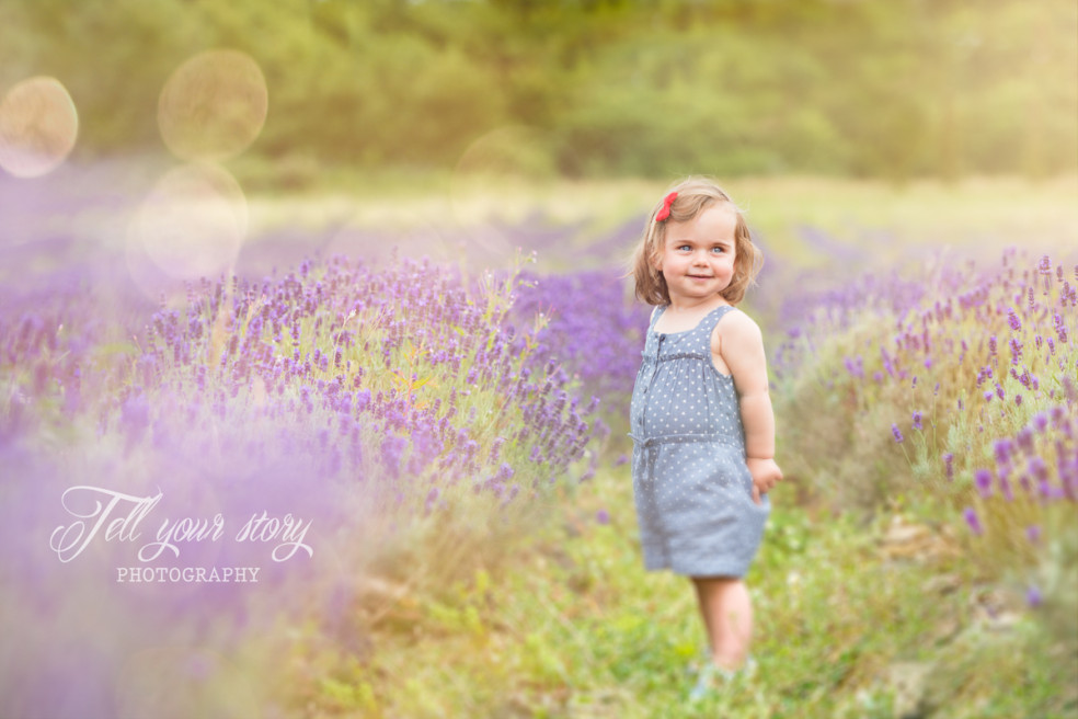 Lavander Field – Children Photographer New Forest