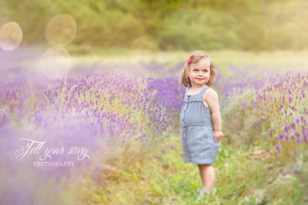Lavander Field – Children Photographer New Forest